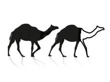 2 Camels Retouch