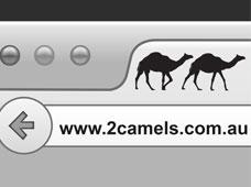 2 Camels Social Media