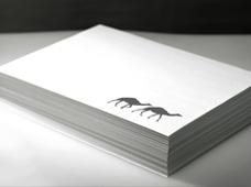 2 Camels Print